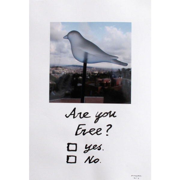 Ampliar Intervention on Photo: <b>Are you free?</b><br /> (40x21. 2012)